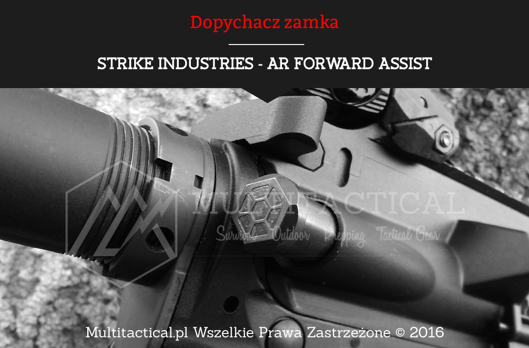 Multitactical.pl - STRIKE INDUSTRIES - AR Forward Assist - Dopychacz zamka