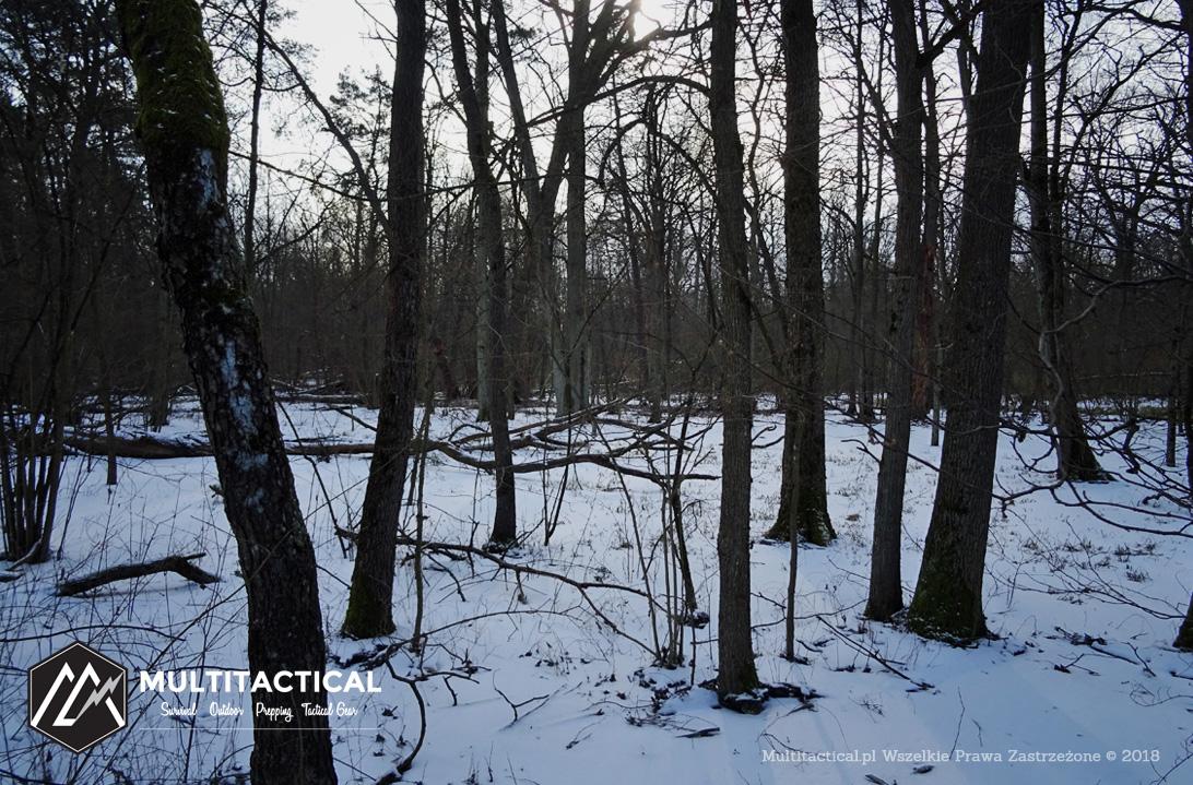 Multitactical.pl - Survival Outdoor Prepping Tactical Gear - Kampinoski Park Narodowy - Czarnym szlakiem na wydmy śródlądowe