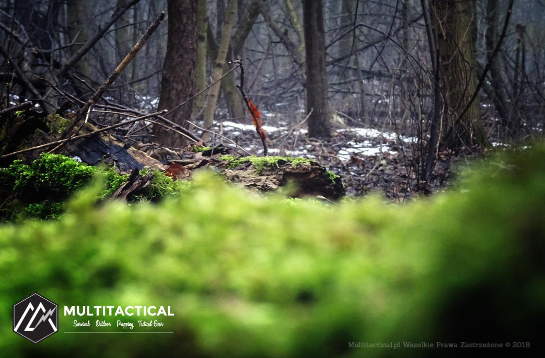 Multitactical.pl - Survival Outdoor Prepping Tactical Gear - Nessmuk - Woodcraft - Sztuka leśnego obozowania - Recenzja